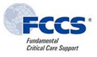 Programa Curso  Fundamentos de Soporte  en Cuidado Crítico FCCS